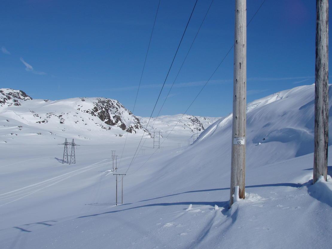 22 kV-linjenett