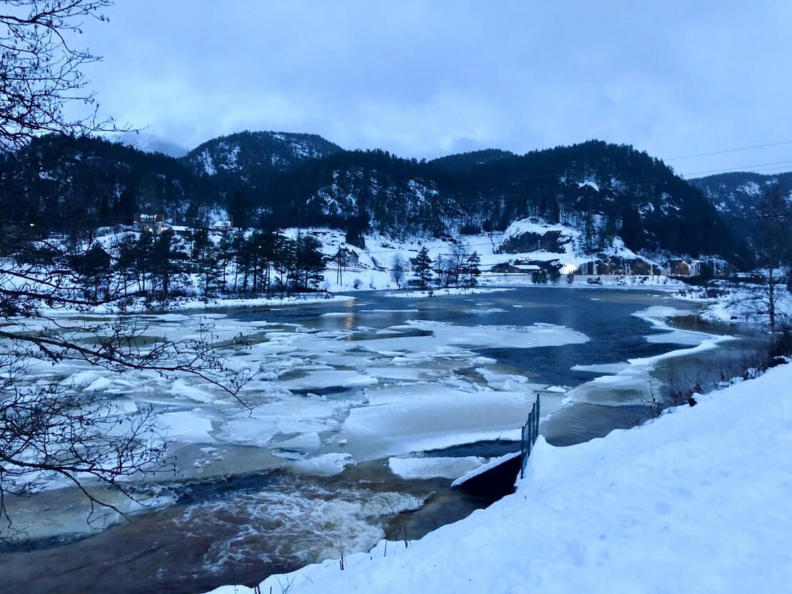 Høy vannføring og isoppstuing i elv