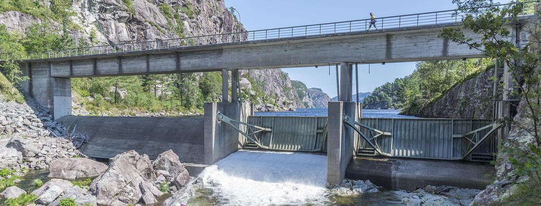 Dam Lundevann